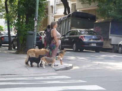 Buenos Aires, Argentina, dog sitting