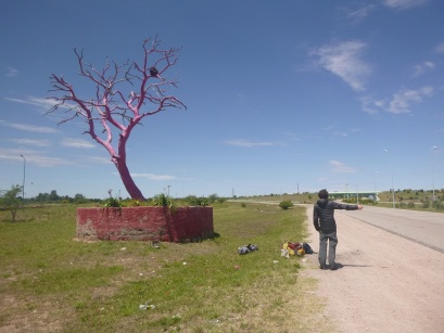 Hitch hiking between Merlo and Medellin, 4h30 waiting next to the pink tree