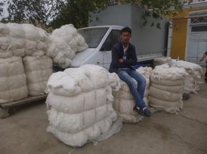 Cotton wholeseller, Khiva, Uzbekistan